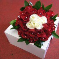 Simply Red Flowers